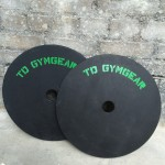 a pair of weight lifting technique plate leaning against the wall of a gym
